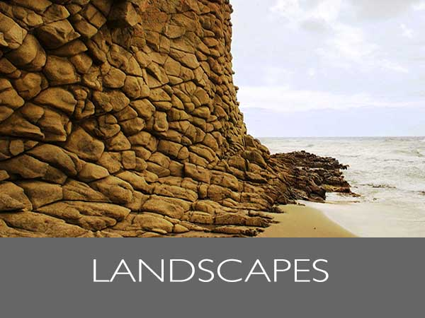 LANDSCAPES_TH600x450