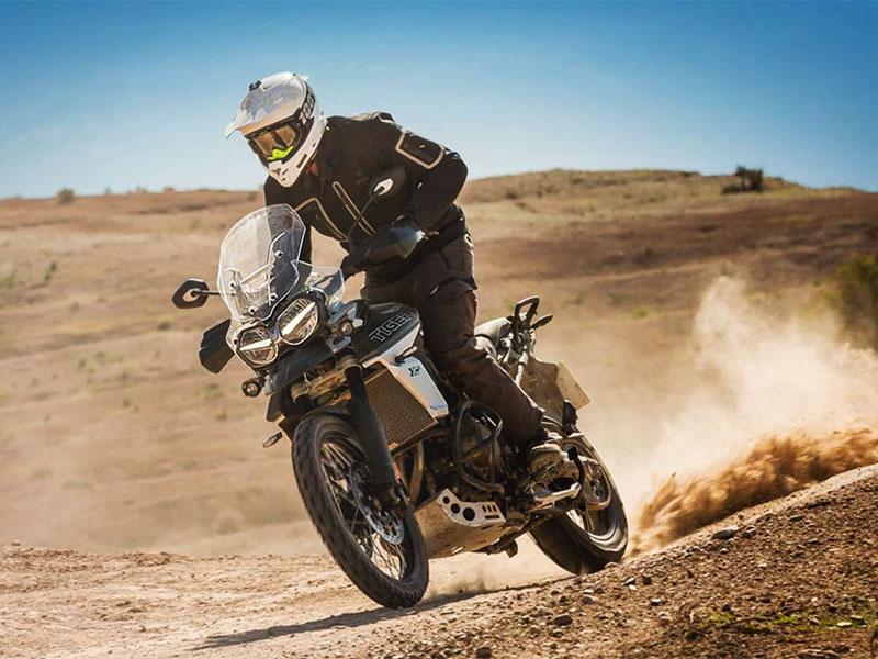 Trumph Motorbikes_TH800x600